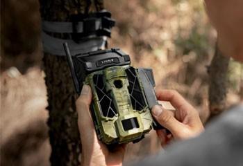 Trail Cameras